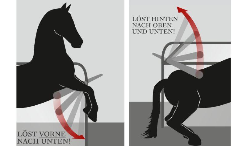 Sistema antipanico per il cavallo